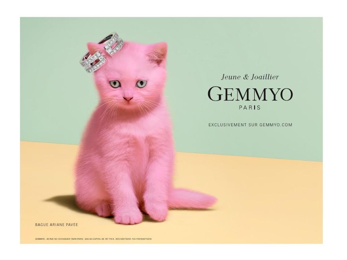 Campagne Gemmyo